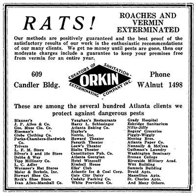 rat flyer