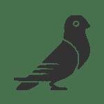 Bird Control Icon