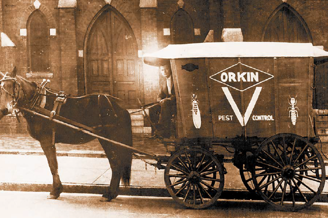Why Orkin Story Mobile